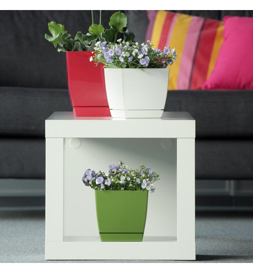 blumentopf viereckig coubi mit untersetzer 15 5 cm fuchsia gl nzend g 3 29. Black Bedroom Furniture Sets. Home Design Ideas
